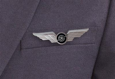 979049_chicago-pilot-wings-silver_2.jpg